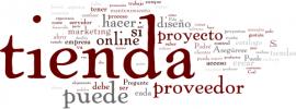 24 preguntas que debe hacer antes de contratar una tienda online